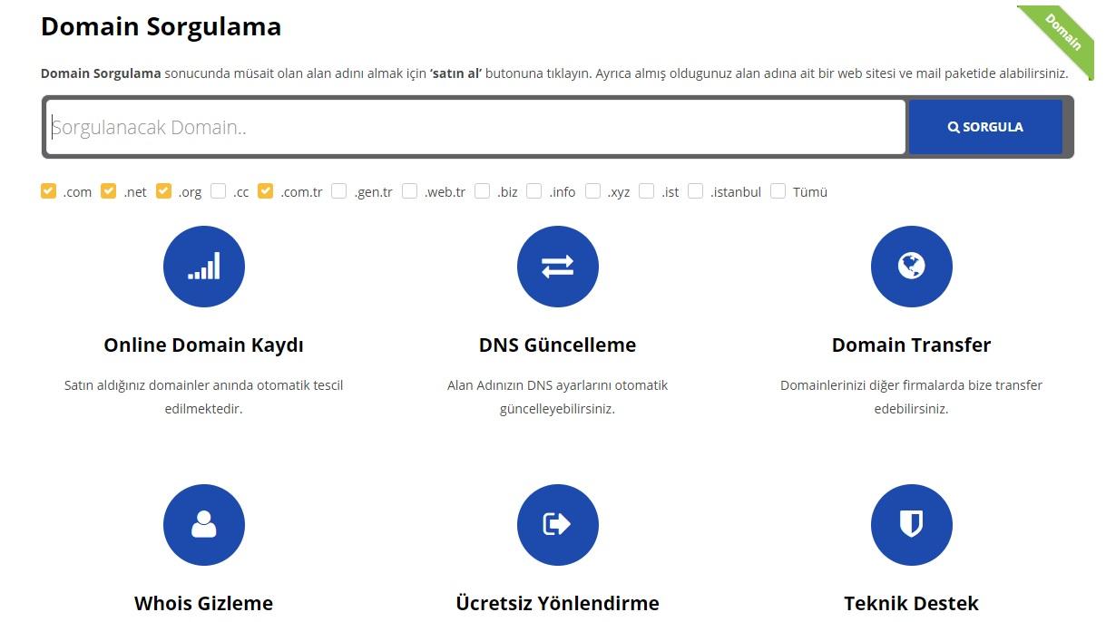 Domain Alma ve Sorgulama Nasıl Yapılır ?