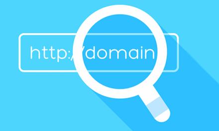 Domain Sahibi Nasıl Bulunur ?